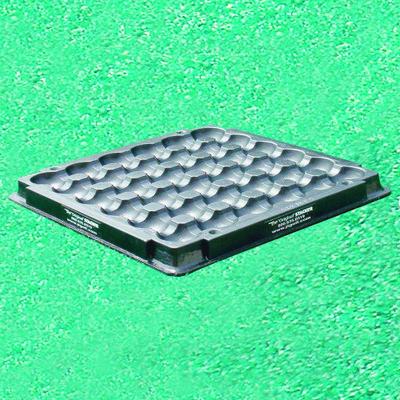 Plastic Pyramid Tray